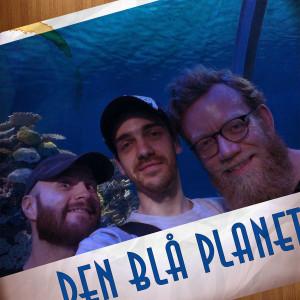 blaa_planet_medium